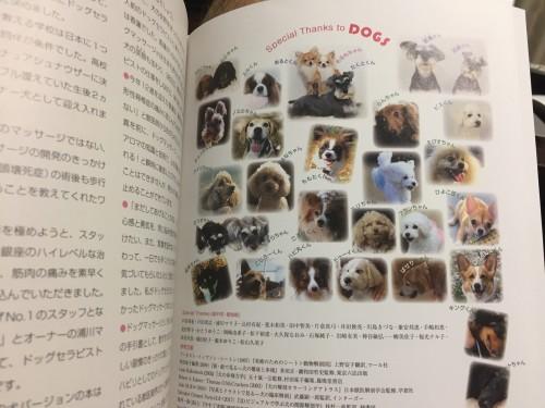 犬 マッサージ